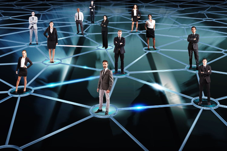Network of professional contacts